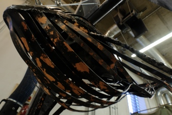Humpback Whale (detail), 2016