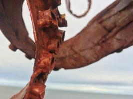 Cressida, The Tidal Octopus, detail - Portobello 2015
